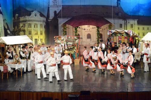 Cjcpct Cindrelul Junii Sibiu